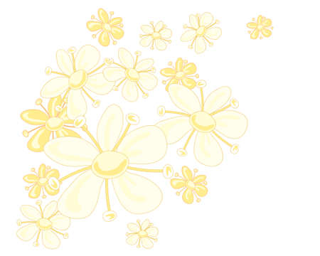 adverts: an illustration of a stylized elderflower design in pale yellow colors on a white background