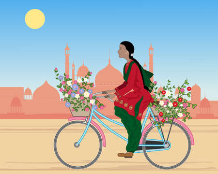 kameez: an illustration of a punjabi woman riding a bicycle with baskets of colorful flowers in a dusty city under a blue sky