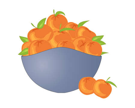 an illustration of a bowl of freshly picked satsumas with stalks and foliage in a decorative slate gray bowl on a white background Illustration