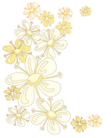adverts: an illustration of abstract elderflowers in a curved design on white background