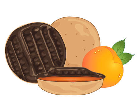 crunch: an illustration of sweet chocolate orange biscuits with a half section and a small orange fruit and foliage on a white background Illustration