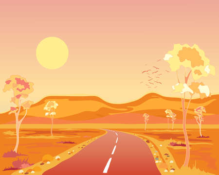 australian landscape: an illustration of a hot australian landscape at sunset with tarmac road hills and eucalyptus trees under a yellow sun