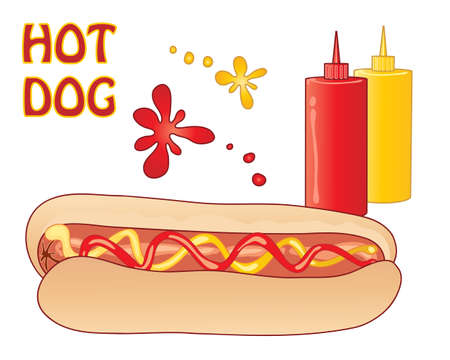 an illustration of a delicious savory hot dog in a bread bun with ketchup and mustard on a white background