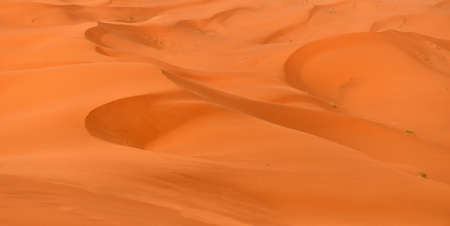 Orange dunes of the Sahara Desert as waves of the boundless ocean