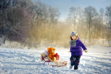 joyful girl rides the sledge in the snow wood Stock Photo