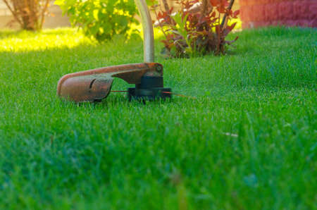 person mows a grass by means of a manual lawn-mower