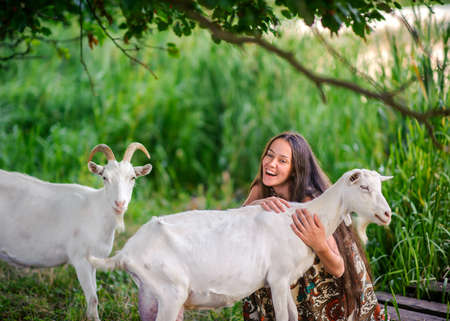 young girl feeds and plays with goats on a farm Stock Photo