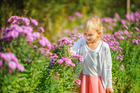 beautiful girl is walking in the park, carefully considering the flowers