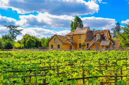 estate: European rural landscape, an old French house with a vineyard Editorial