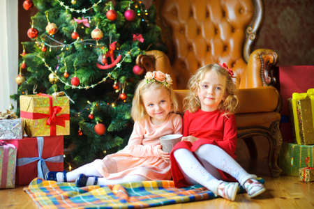 two beautiful girls are sitting on the floor near the festive Christmas tree, with a mug of tea in their hands