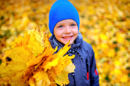 happy boy smiling and holding a bouquet of autumn leaves 版權商用圖片
