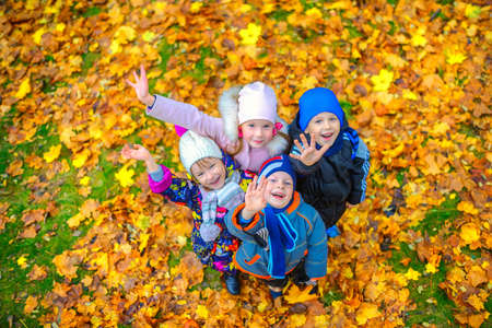 funny children play and have fun in a beautiful autumn park