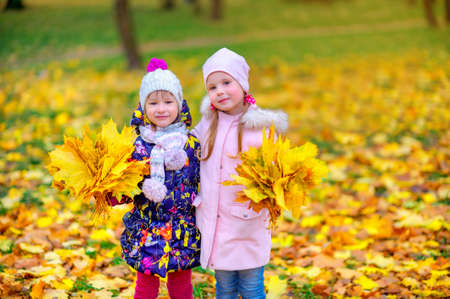 two girlfriends with beautiful bouquets of fallen leaves in the autumn park