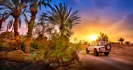 Travel, SUV rides a desert road at beautiful sunset, extreme travel adventure in nature