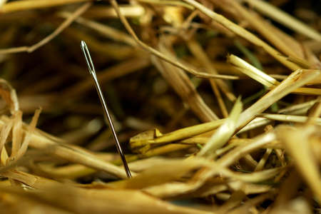 Needle in a hay stack Stock Photo