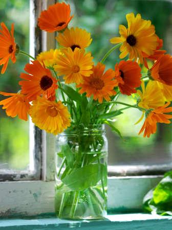 Village still life - closeup of orange flowers on window-sill. Calendula Officinalis L. photo