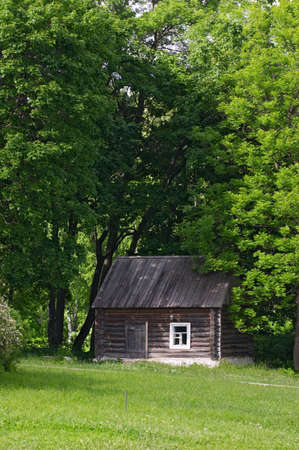 Little house with trees arow photo