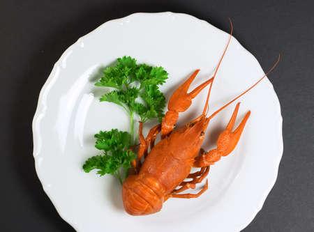 Crayfish on plate photo