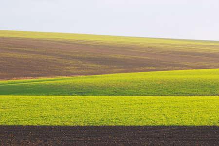 Spring fields background Zdjęcie Seryjne