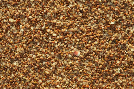 Closeup of sand - background texture