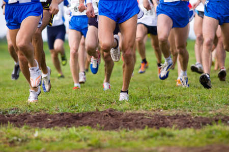 cross country: Athletes at the start of a cross country race