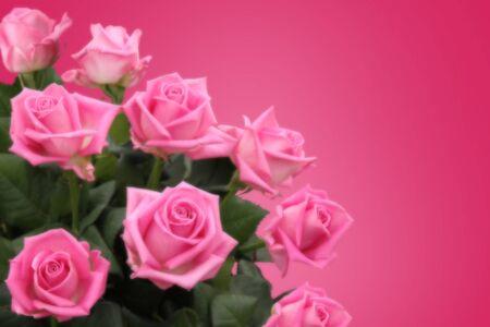 Bouquet de rosas Foto de archivo