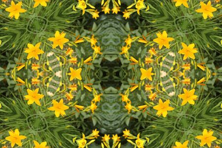 abstract background with yellow lilies photo