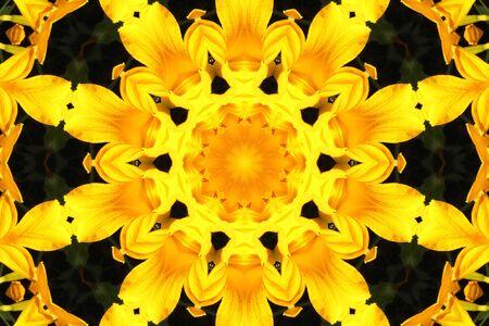 fondo abstracto con lirios amarillos Foto de archivo