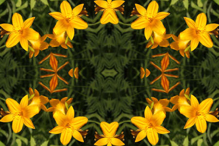 Abstract ornament with yellow lilies photo