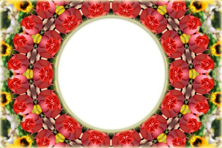 Frame with red roses photo