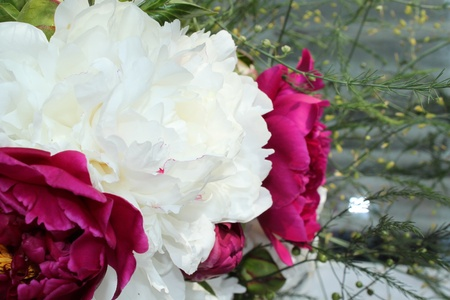 bouquet of lilac and white gladioluses