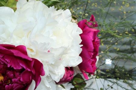 ramo de gladiolos de color lila y blanco