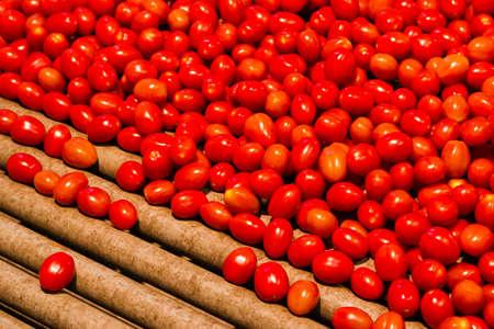 Cherry tomaten klaar om te worden gevuld met een machine Stockfoto