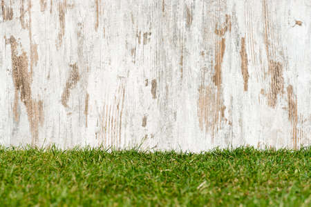weathered wood on the meadow Stock Photo