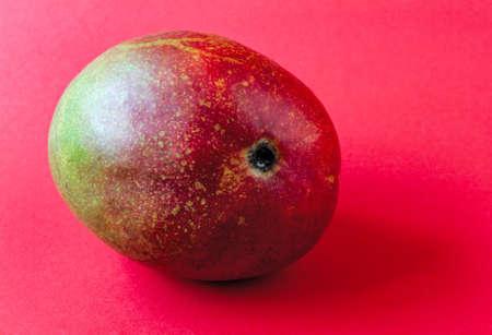 close-up ripe mango fruit on a red background Banco de Imagens