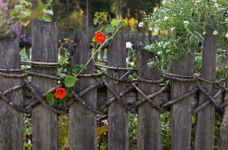 Old wooven fence in bavaria, no nails used. Autumn colors. Stock Photo
