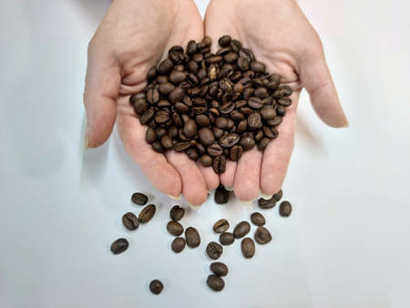 Female hands hold a handful of brown grains of roasted coffee Imagens