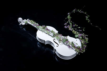White decorative violin and flower composition Stock Photo