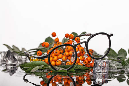 Glasses, bunch of ashberry on a glass background