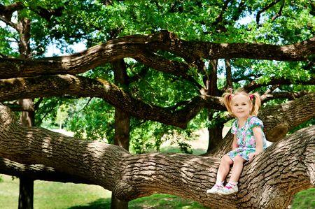 ni�o escalando: Ni�o lindo chica sentada en el enorme rama de �rbol y sonriente