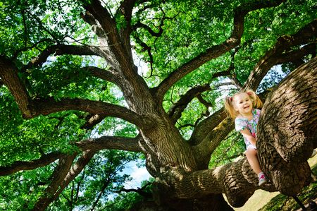 huge tree: Cute toddler girl sitting on branch huge tree and smiling Stock Photo