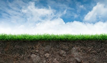 푸른 하늘에 토양 및 녹색 잔디