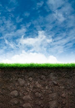 BLYE 하늘에 잔디와 느슨한 토양 스톡 콘텐츠