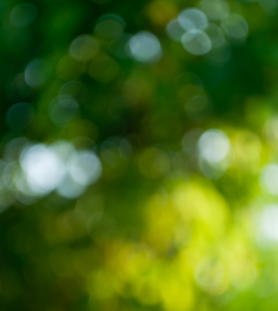 아름 다운 어두운 흐림 노란색과 녹색 배경 스톡 콘텐츠