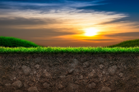 Soil and Green Grass in Sunset Background