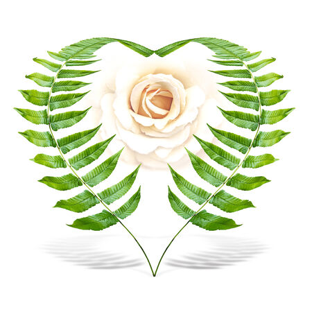 bough: The heart shape from fern with rose