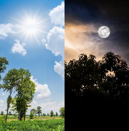 correlate: Sun in daytime and moon in nighttime