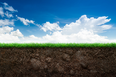 Loose soil and green grass on blue sky background