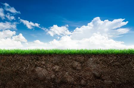 푸른 하늘 배경에 느슨한 토양과 녹색 잔디