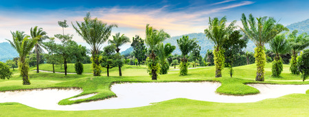 Tree and sand bunker in panorama golf course
